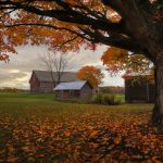 Vermont Fall Foliage Tour