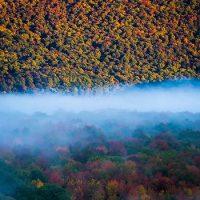 Fall Foliage Berkshire
